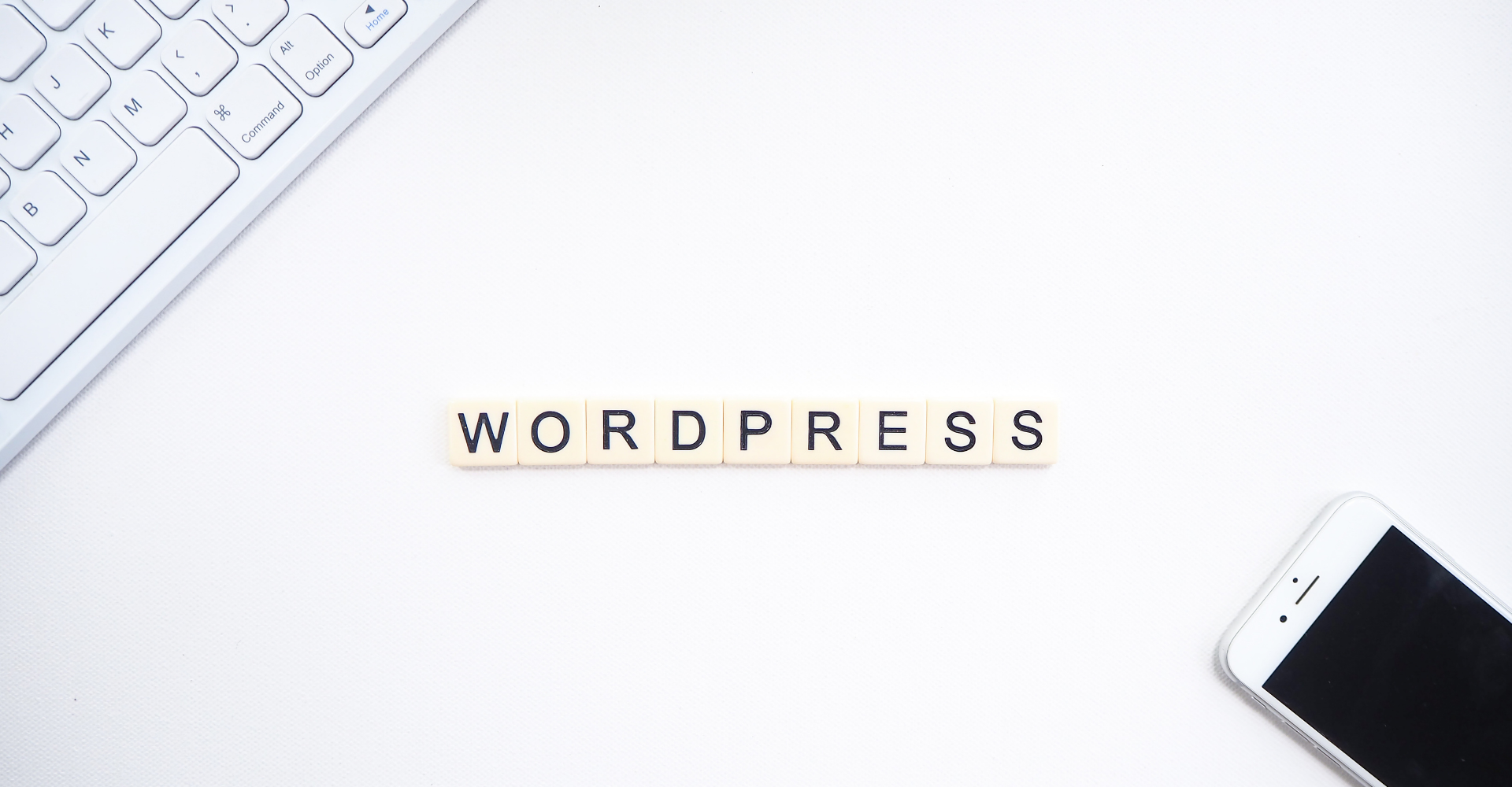 """9 Reasons To Create Your Website with WordPress"""